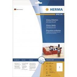 Etykiet błyszczące 8895, A4, 210 x 297 mm., papier błyszczący, 10 szt.